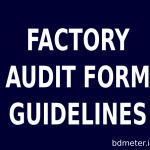 Factory Audit Form and Guidelines